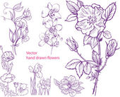Set of hand drawn flowers — Stock Vector