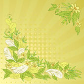 Background: leaves, flowers and feathers — Stock Vector