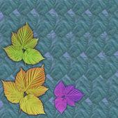 Pozadí, barevné listí — Stock fotografie