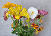 Flores y lona — Foto de Stock
