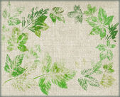 Leaves, painted on canvas — Stock Photo