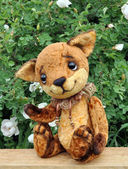 Ron fox cub — Stock Photo