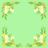 Leaves, flowers and feathers on green — Stock Vector