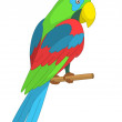 Parrot on a pole — Foto Stock