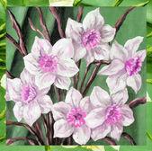 Cuadro, flores — Foto de Stock