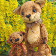 Teddy bear, fox cub and flowers — Stock Photo