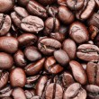 Coffee bean — Stock Photo #10235268