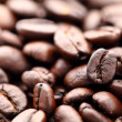 Coffee bean — Stock Photo #10481363