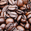 Coffee bean — Stock Photo #10578093