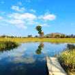 Wetland — Stock Photo #10650962