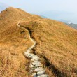 Mountain path — Stock Photo #8077648