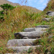 Mountain path for hiking — Stock Photo