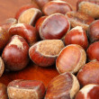 Chestnut — Stock Photo #8265292