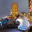 Dragon Tiger Tower at night — Stock Photo