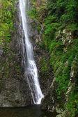 Waterfall — Foto de Stock