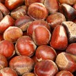 Chestnut — Stock Photo #8473483