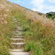 Mountain path for hiking - Stock Photo