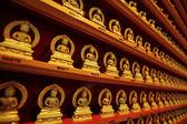 Filas de la estatua dorada de buda — Foto de Stock