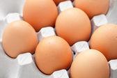 Ovos na caixa — Foto Stock