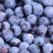 Stock Photo: Blueberries
