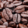 Coffee bean — Stock Photo #9391325