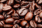 Coffee bean closeup — Stock Photo