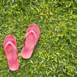Flip flops on grass - Stockfoto
