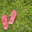 Flip flops on grass - Stock Photo