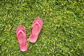 Flip flops on grass — Stock Photo
