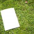 Stock Photo: Blank white flyer