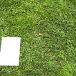 White board on field — Stock Photo
