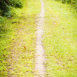 Stock Photo: Walking trail in outdoors