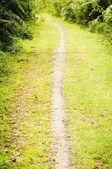 Walking trail in outdoors — Foto Stock
