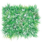поддельные травы патч — Cтоковый вектор