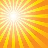 Summer sunburst — Stock Vector