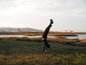 Handstanding Marshes outside of SFO Airport — Stockfoto