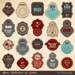 Retro label collection — Vector de stock #9984710