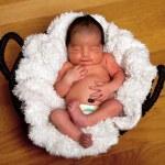 Cute baby asleep in basket — Stock Photo
