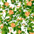 Seamless background with orange roses — Stock Vector #8950773