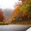 Stock Photo: Road in the fall