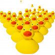 Stock Photo: Horde of rubber duckies