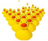 Horde of rubber duckies — Stock Photo