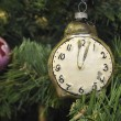 Royalty-Free Stock Photo: New Year time
