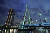 Nacht-hängebrücke — Stockfoto