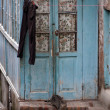 Old wooden door — Stockfoto #9806476