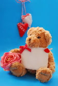 Teddy bear with valentine`s greetings — Stock Photo