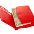 Red wallet with polish money isolated on white — Stock Photo