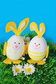 Easter funny eggs — Stock Photo