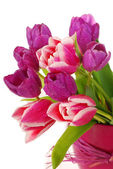Bunch of pink and purple tulips — Stock Photo