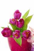 Bunch of purple tulips — Stock Photo